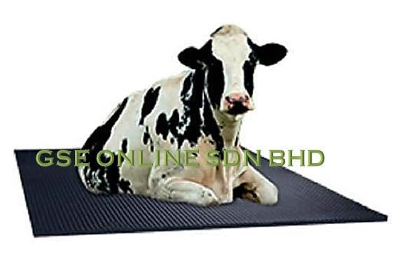 cow mat tikar lembu Malaysia