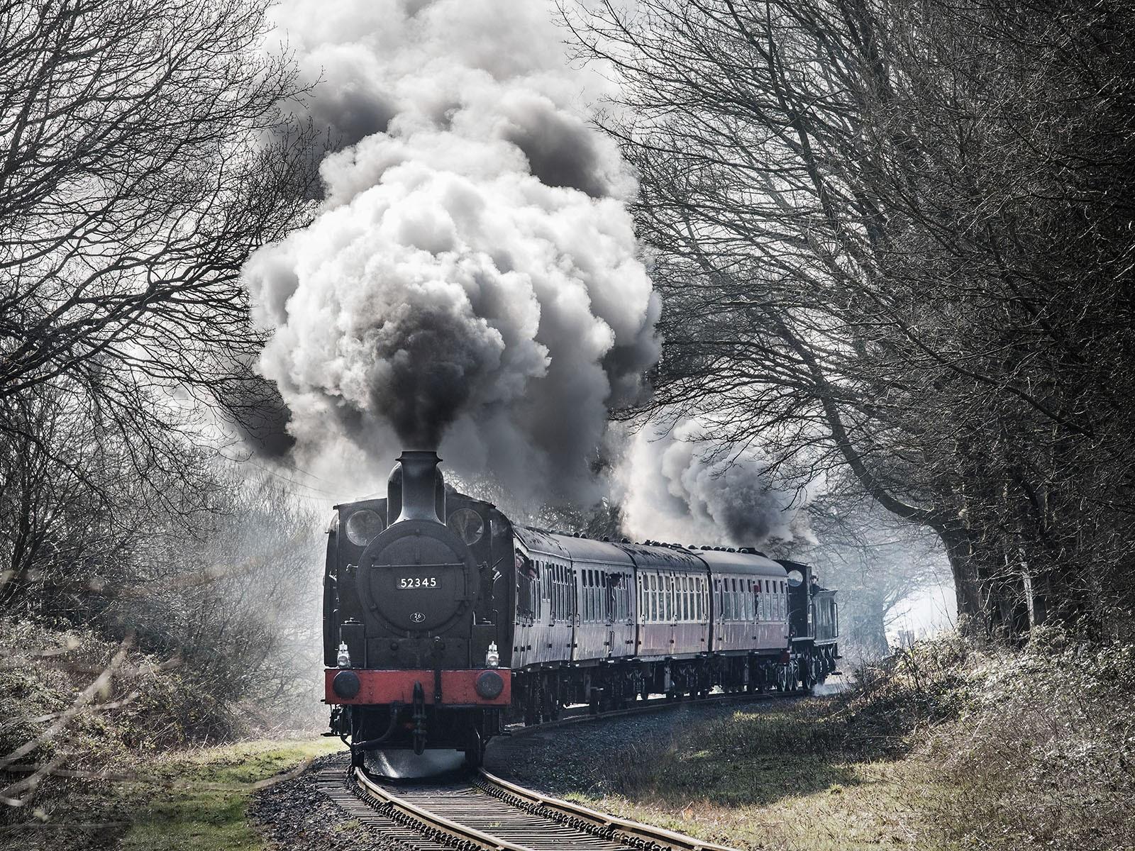 Morning Steam by Stephen Singleton