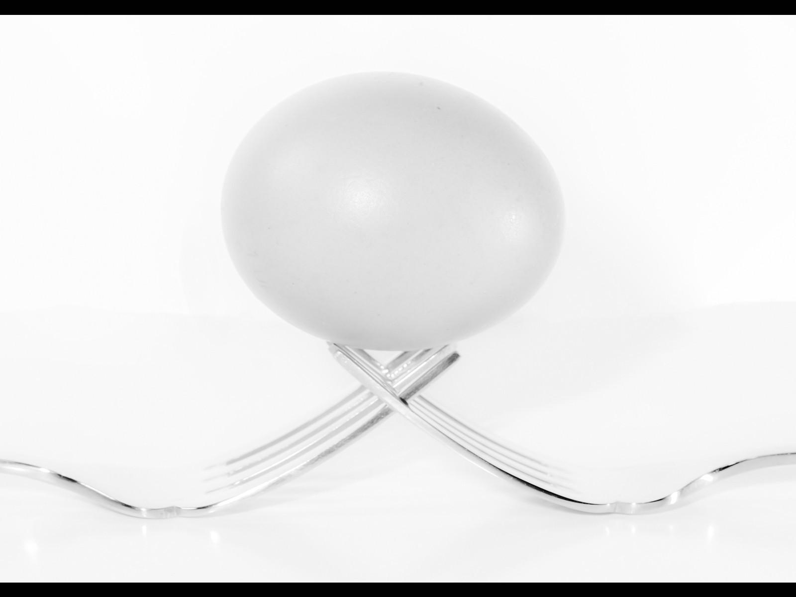 6.Eggtastic