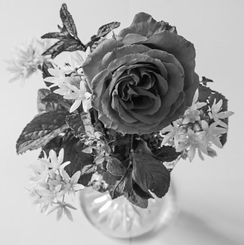 10.Rose & Herb Mix
