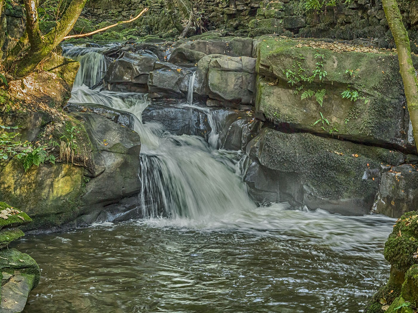 Healey Dell waterfall