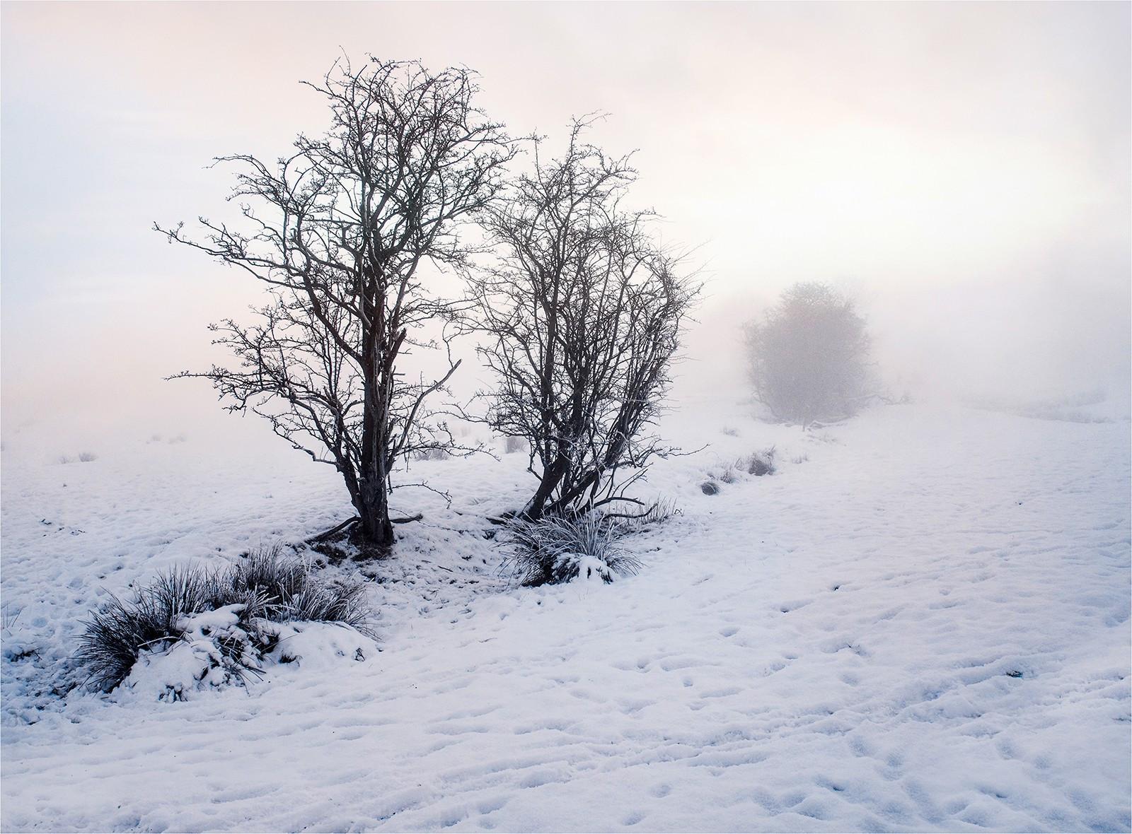 Mist snow cold  Atmosphere.