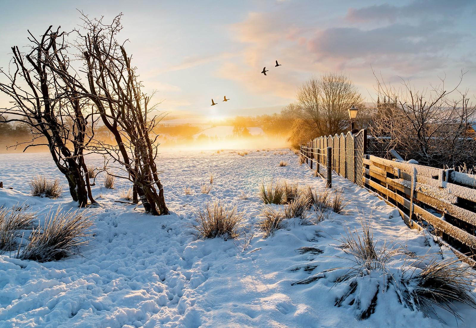 Frosty misty sunrise