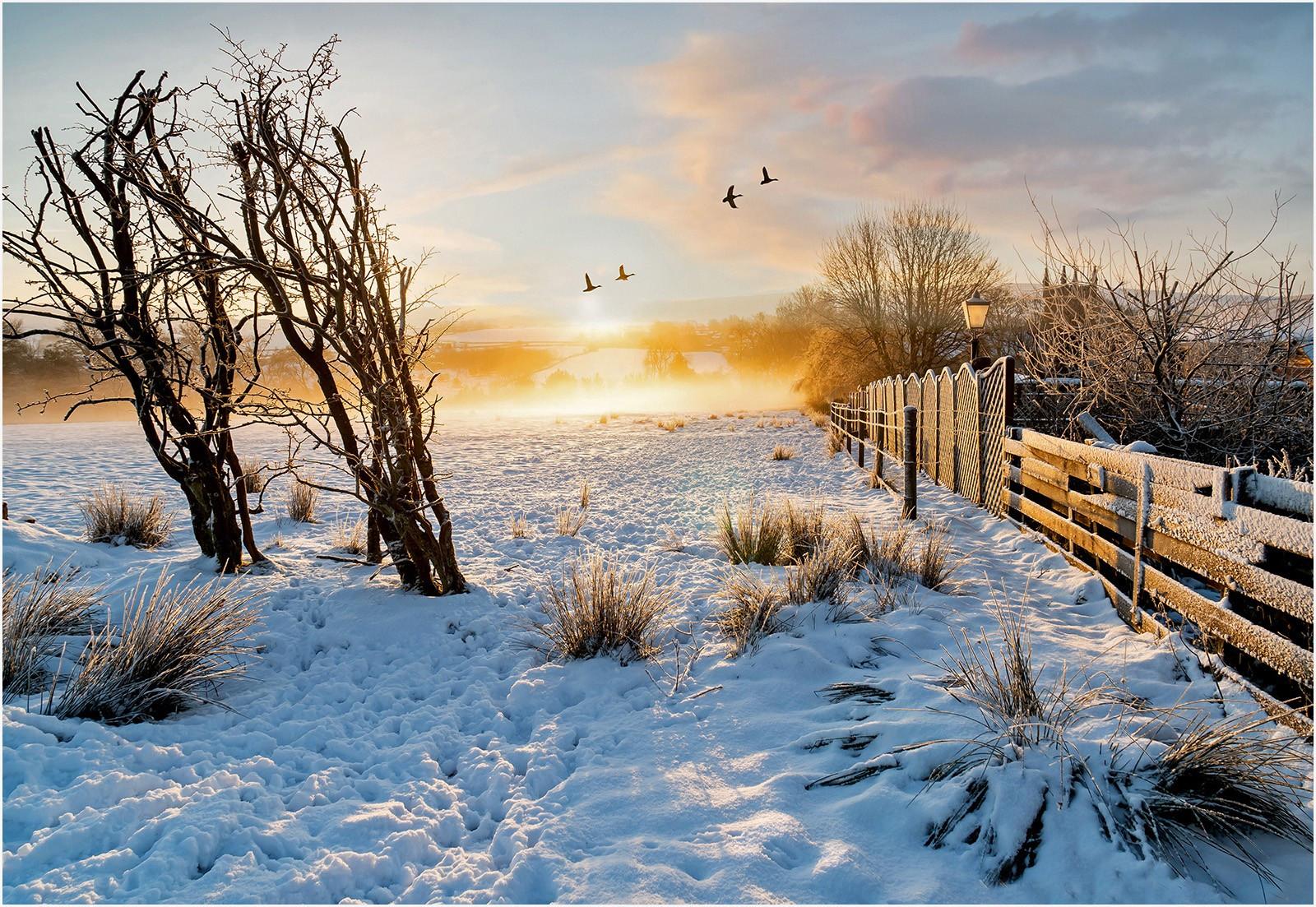 8. Frosty misty sunrise