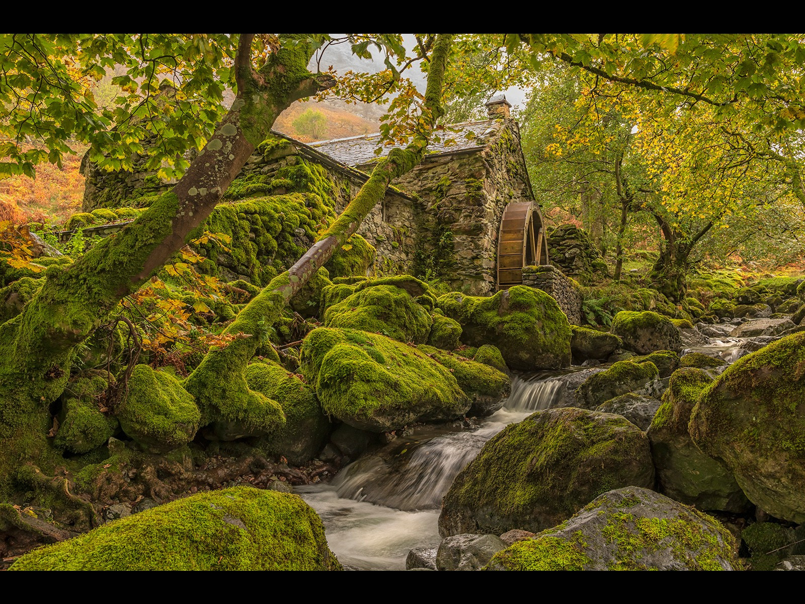 The Secret        Watermill        Andy Pritchard    16