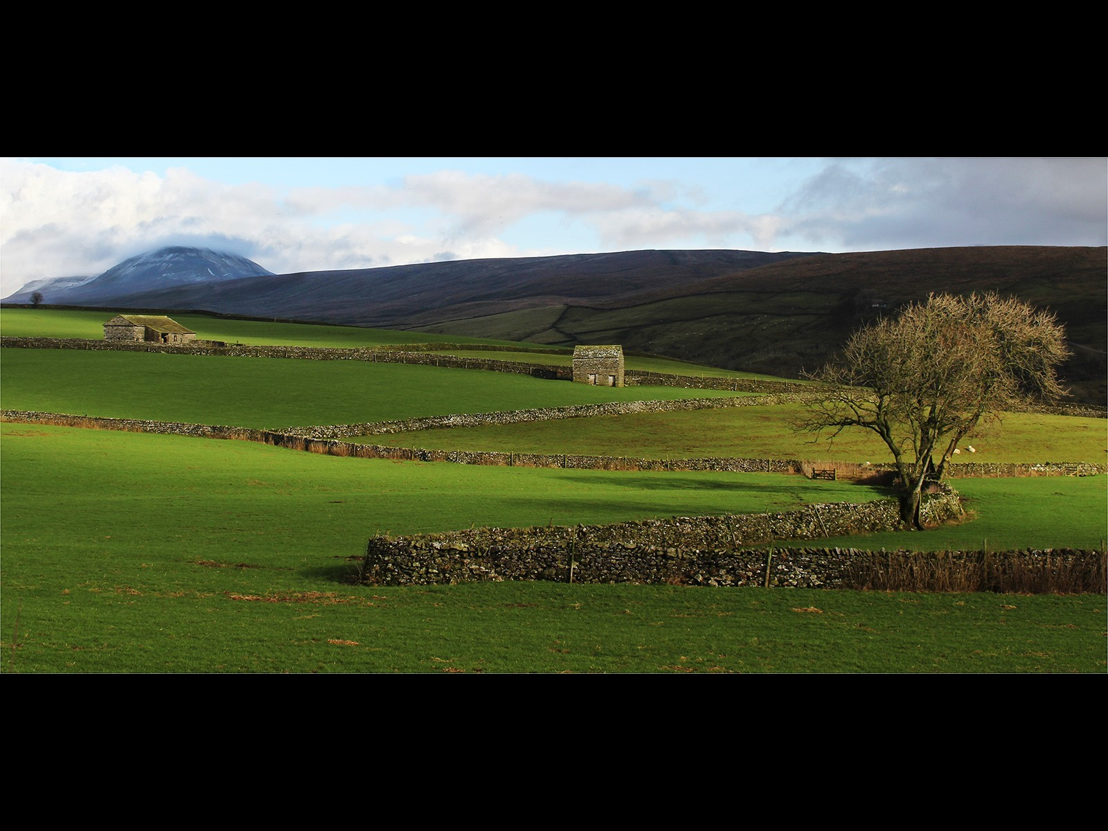 Light on the Land - Yorkshire Dales