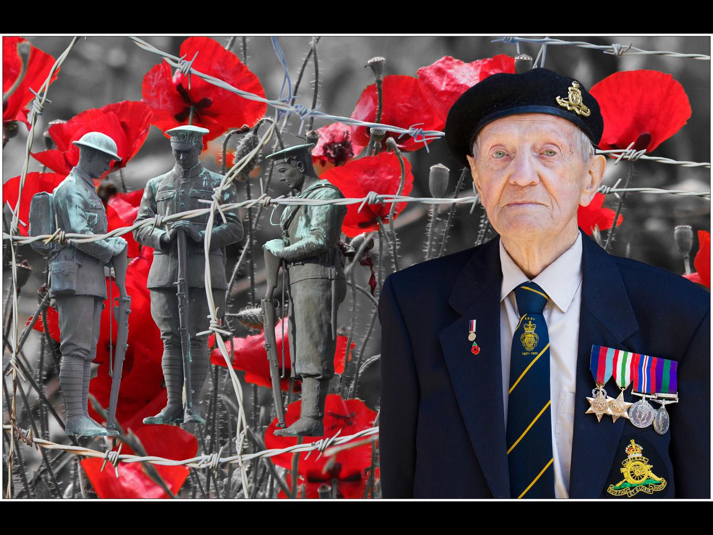 Remembering the Fallen (1914 - 2014