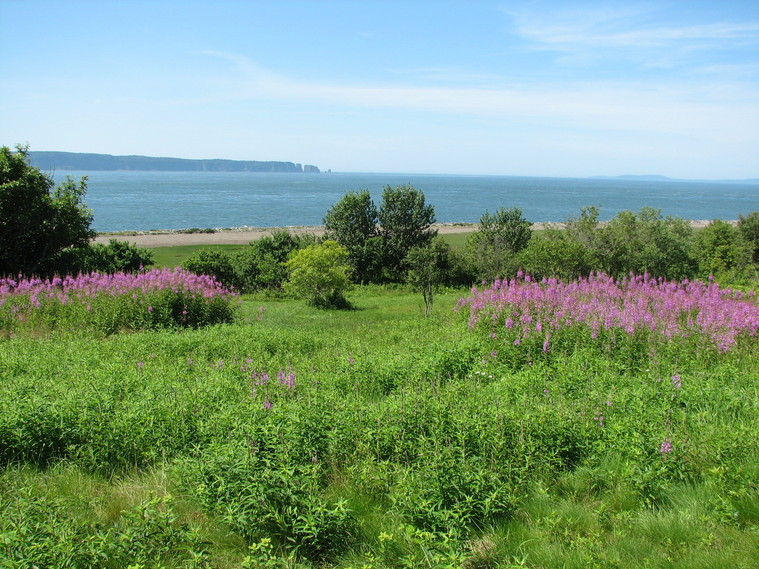 Cottage Accommodations in Parrsboro, Nova Scotia, Bay of Fundy