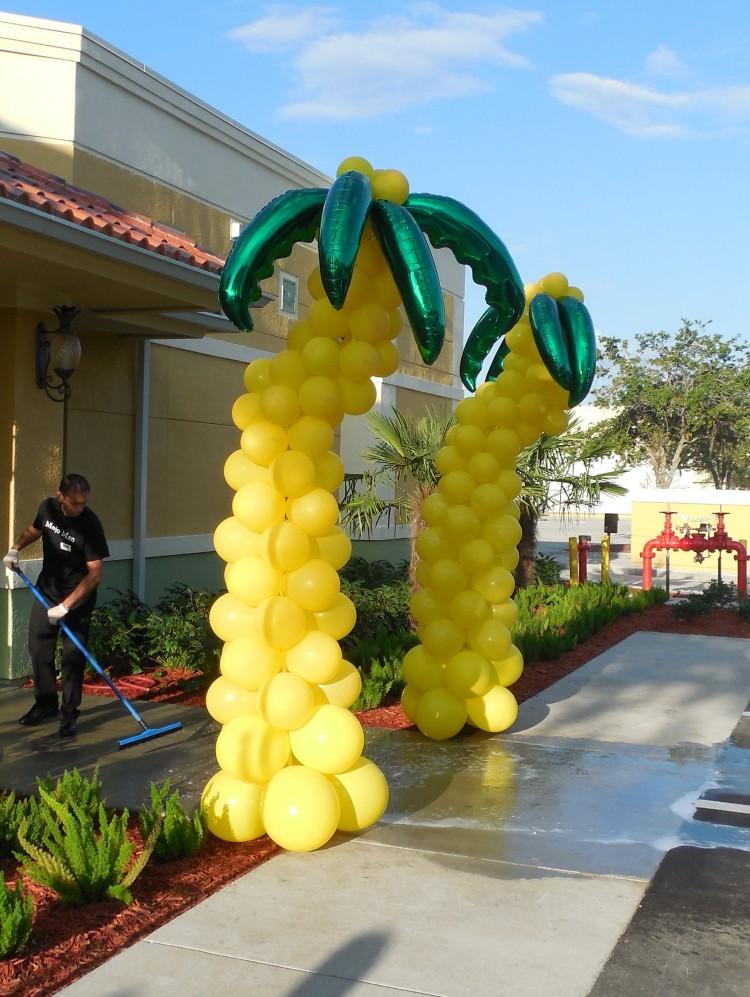 Seminole Tampa Bay Balloon