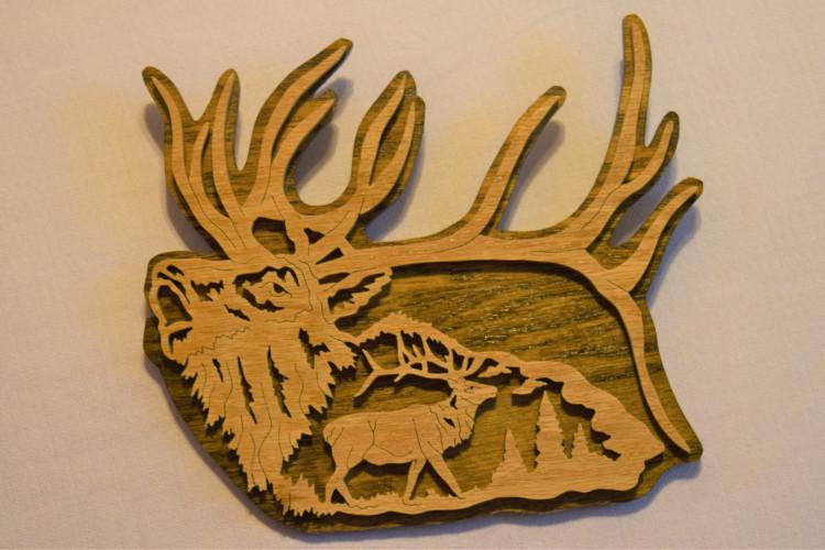 Elk Majestry