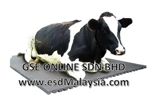 cow mat Malaysia